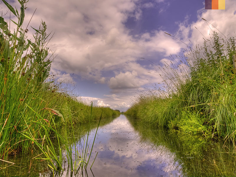 marshlands enveloping a river in the Green Heart of Holland on a cycling holiday