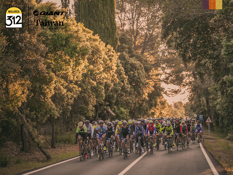 A large group of cyclists competing in the 312 Mallorca cycling holiday