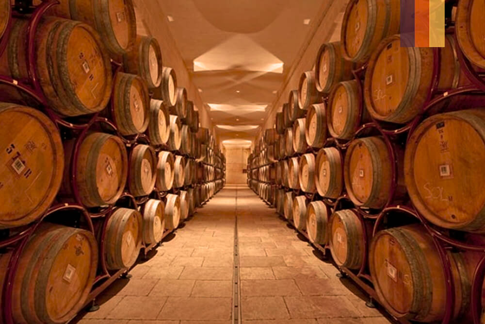 Oak barrels of wine at a vineyard in Puglia on a cycling holiday